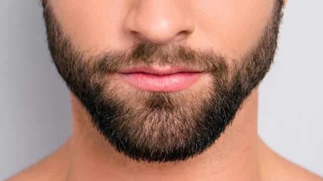 portrait homme détail la barbe